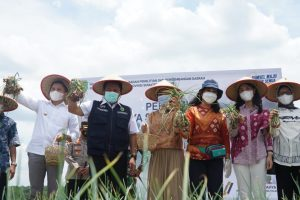 HD: Jadikan Sriwijaya Science Techno Park Sebagai Pusat Penelitian, Riset dan Agrowisata Edukatif di Sumsel