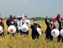 Gubernur Jawa Barat Hadiri Giat Rembuk Tani dan Panen Raya